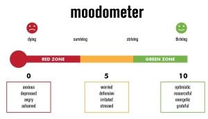 Moodometer