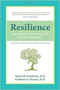 Resilience Study